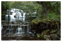 Tasmanian Wilderness Adventures
